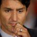 Acusan a Trudeau de fraude